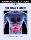 Digestive System Enhanced Edition