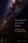 The Cosmic Common Good