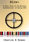 Blow A Short Story Of The Military Misadventures Of Having  PTSD