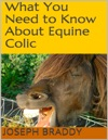 What You Need To Know About Equine Colic