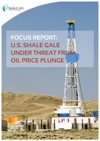 FOCUS REPORT US Shale Gale Under Threat From Oil Price Plunge