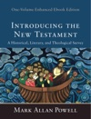 Introducing The New Testament One-Volume Enhanced Ebook Edition