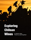 Exploring Chilean Wines