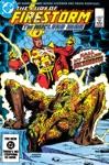 The Fury Of Firestorm 1982- 19