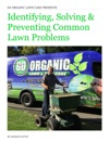 Identifying Solving  Preventing Common Lawn Problems