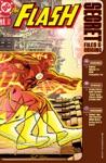 The Flash Secret Files 1997- 3