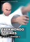 Fist Strikes   Jireugi  Taekwondo Preschool