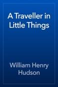 William Henry Hudson - A Traveller in Little Things artwork