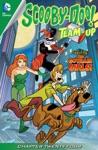 Scooby-Doo Team-Up 2013- 24