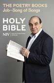 NIV Bible: the Poetry Books