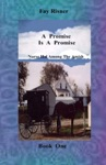 A Promise Is A Promise-book 1-Nurse Hal Among The Amish