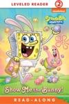 Show Me The Bunny 2016 Edition SpongeBob SquarePants