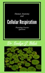 Human Anatomy And Physiology Practice Questions Cellular Respiration