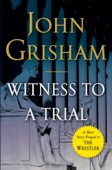 Similar eBook: Witness to a Trial