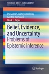 Belief Evidence And Uncertainty