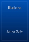 James Sully - Illusions artwork
