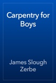 James Slough Zerbe - Carpentry for Boys artwork
