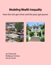 Modeling Wealth Inequality