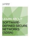Learn About Software-Defined Secure Networks SDSN