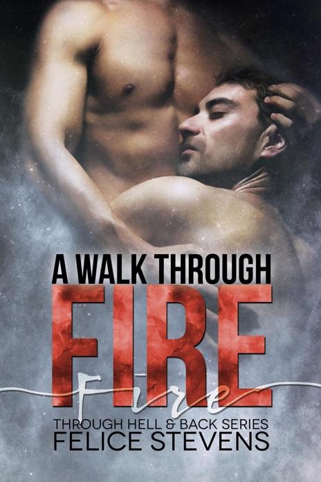 A Walk Through Fire Felice Stevens Book
