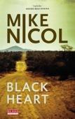Mike Nicol - Black Heart kunstwerk
