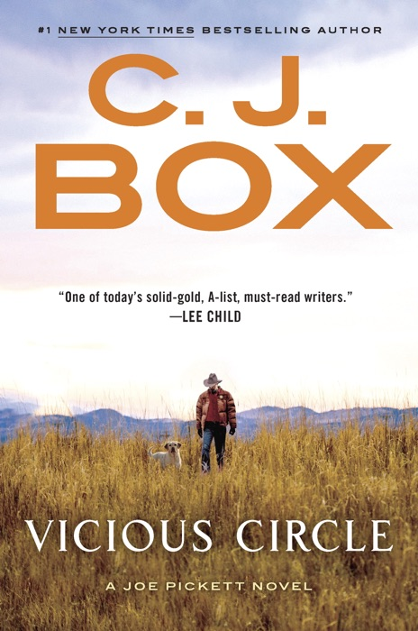Vicious Circle C J Box Book