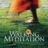 Walking Meditation Enhanced Edition