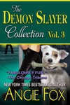 Accidental Demon Slayer Boxed Set Vol 3