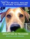 Dog Pet Holistic Healing  Natural Alternatives