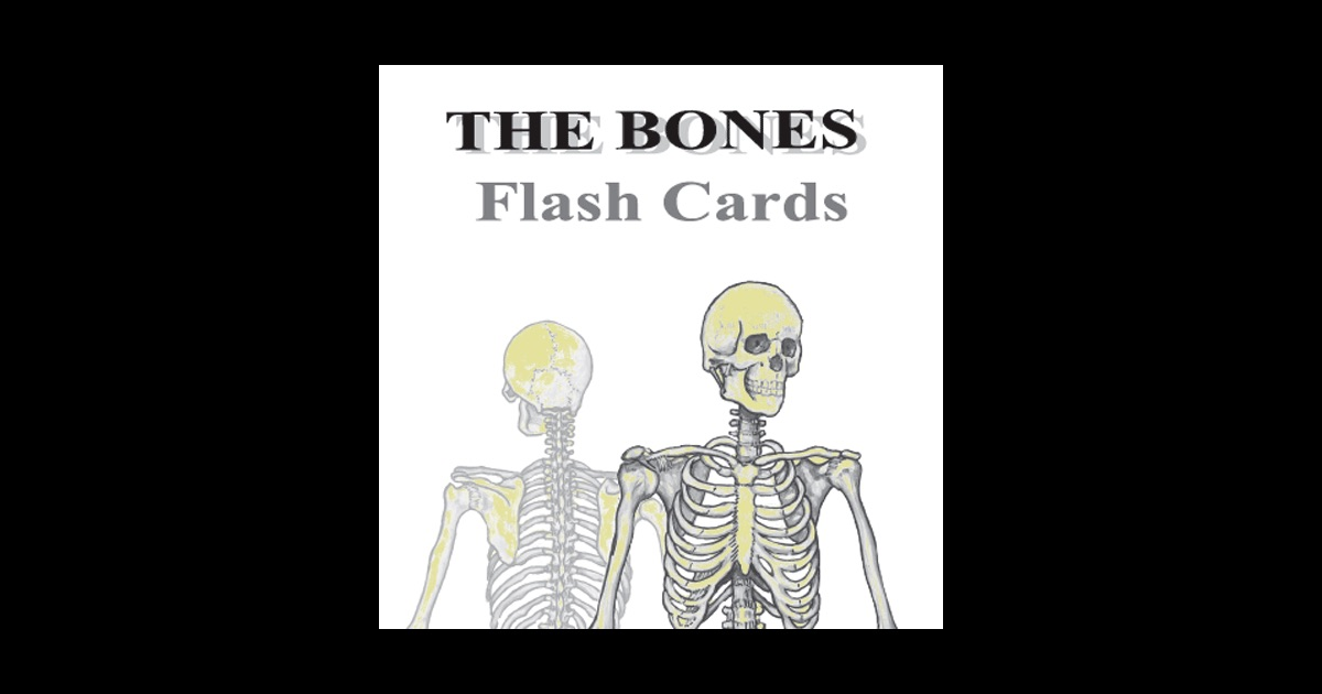 Lujoso Anatomy And Physiology Flash Cards Free Embellecimiento ...
