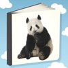 Leer Mij Woorden - Een leukspel waarmee kinderen woorden kunnen leren - Tailmind Kinder spellen