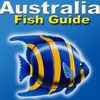 Australia Fish Guide   Fishes of the great Barrier   Australia Fish ID