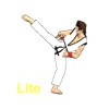 Final Karate Lite Version
