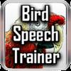Bird Speech Trainer