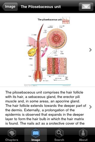 Miniatlas Anatomy Screenshot 2