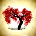 iBonsai icon
