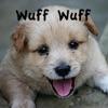 Wuff Wuff-Die Barking Spiel