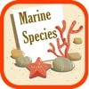 Marine Species of World