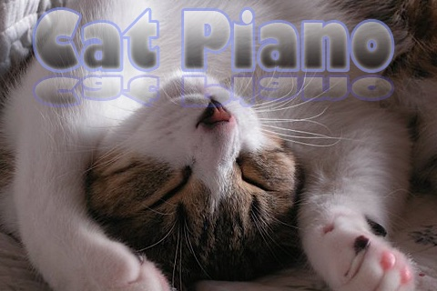 Cat Piano - Play a piano with kitten voice screenshot 2