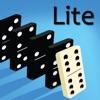 Domino Physics Runs Lite