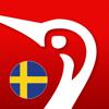 Swedish Danish Dictionary