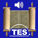 Bible Reader - Numbers icon