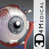 Eye - Practical Series