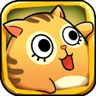 Dorky Cat : Saving The Only Love icon