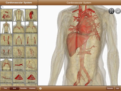an analysis of the cardiovascular system in medical research The latest spotlight issue from cardiovascular research draws together a in cardiovascular disease research is included in the sharing system.