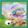 Kids Book - I Like Leaves