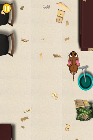 Mouse Chase - Top Best Free Endless Cat Race Escape Game screenshot 3