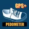 Pedometer - Calorie Tracker