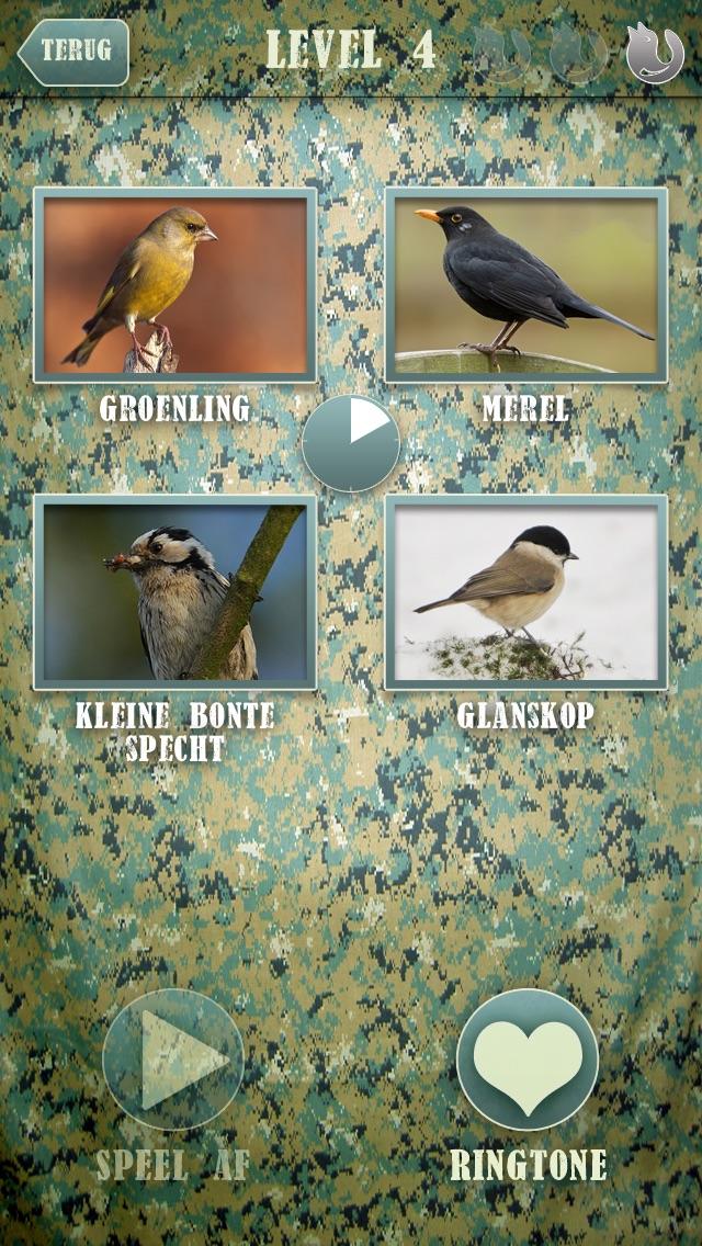 Download Fluit **Dé vogelgeluiden trainer** App