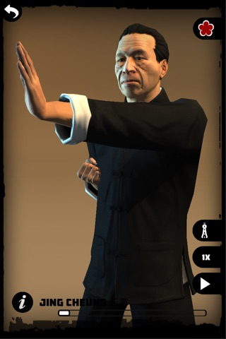 Ip Man Wing Chun Kung Fu : SLT screenshot 2